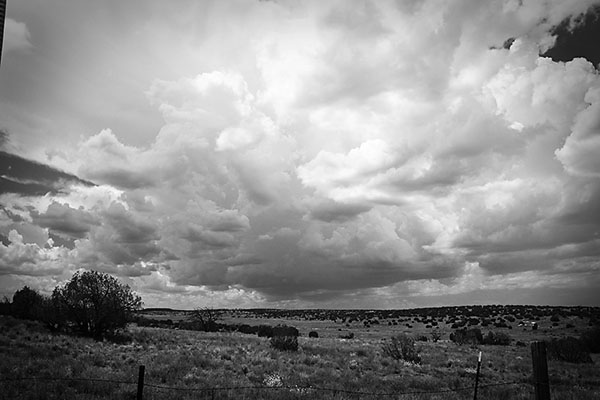 Ranch Revue: Cloudy, With A Chance of Rain